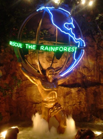 RainforestCafeMU2