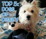 Top 5: Dogs of Disney