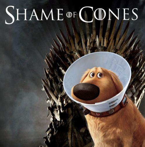 shame of cones